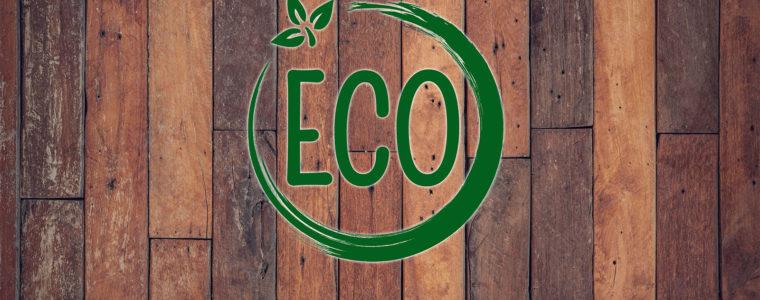 Ekologiczne oleje do drewna Remmmers